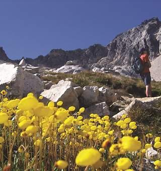 Bariloche, una ciudad para visitar
