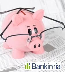 bankimia-cerdo-gafas.jpg
