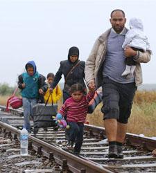 refugiadosss