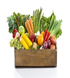 Frutas y hortalizas, la comida que más tiran los españoles a la basura