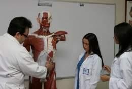 medicina2.jpg