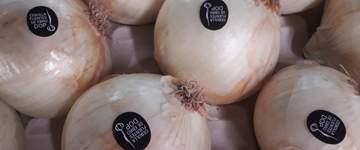 Las cebollas de la DO Fuentes de Ebro quieren conquistar el mercado todo el año