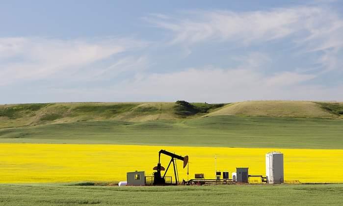 petroleo-campo-bonito.jpg