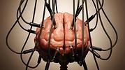 cerebro-istock.jpg