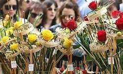 La venta de rosas amarillas se dispara hasta el 10% por los presos soberanistas