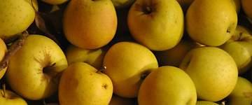 UAGA-COAG pide que se concedan los préstamos a productores de fruta y afectados por sequía
