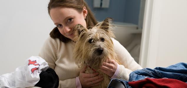 Perro-mascota-getty-635.jpg