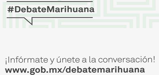 Marihuanaplataforma_635.jpg
