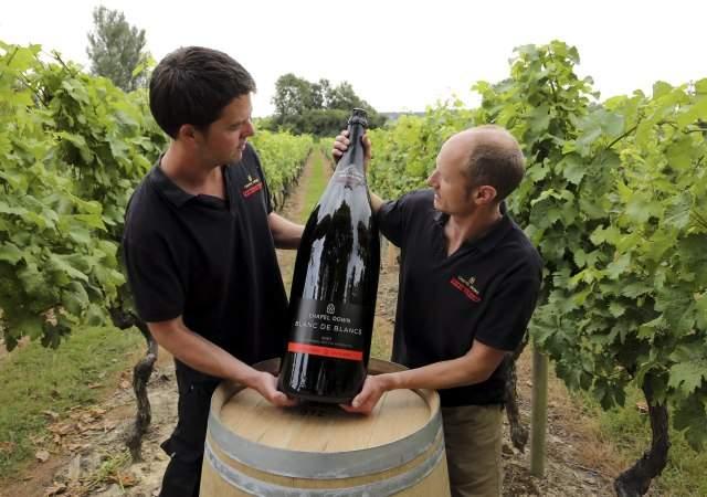 Las novedades del vino en 2018