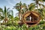 La Casa del Árbol de Playa Viva