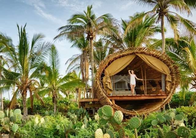 La casa del rbol de playa viva un lugar donde for Casa del arbol cuenca