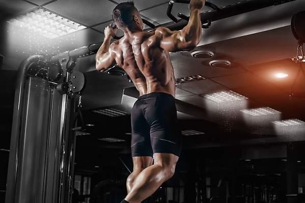 como combinar los alimentos para aumentar masa muscular