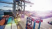 exportar-puerto.jpg