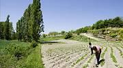agricultura-665-efe.jpg