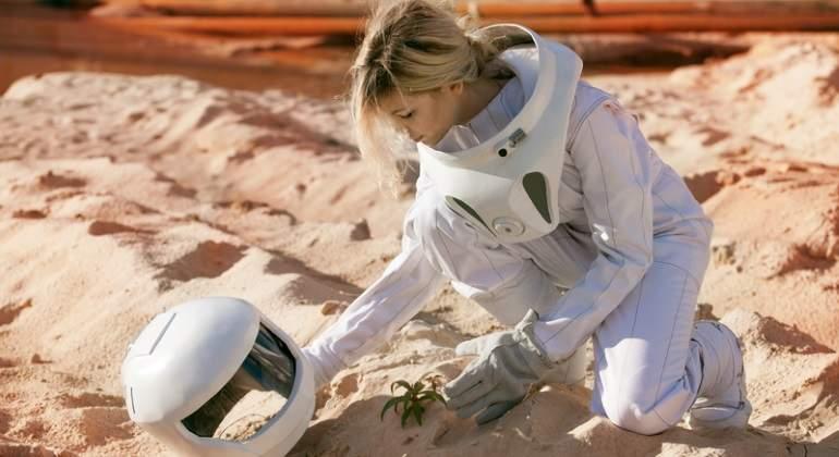 cultivo-espacio-marte-dreams.jpg