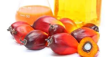 Lo que hay que saber sobre el aceite de palma