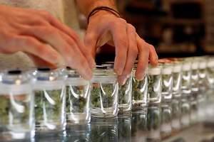 Marihuana, negocio millonario en México