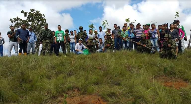 reforestacion-poli