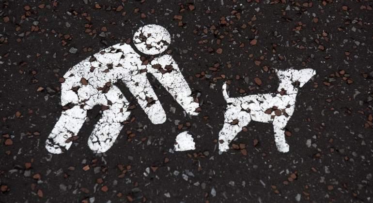 perros-excrementos-getty.jpg