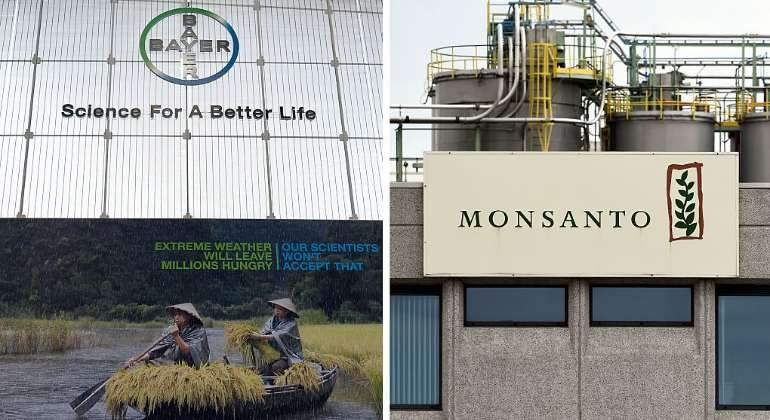 Bayer-Monsanto-Getty.jpg