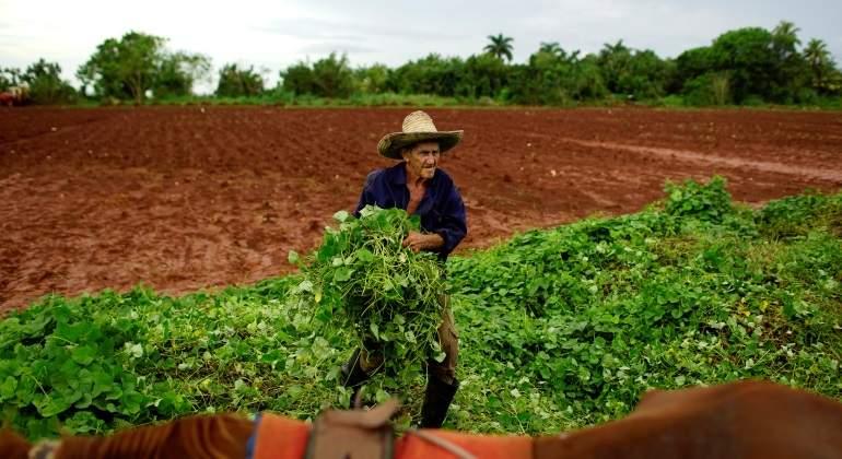 agricultor-cuba-mayor-reuters-770x420.jpg