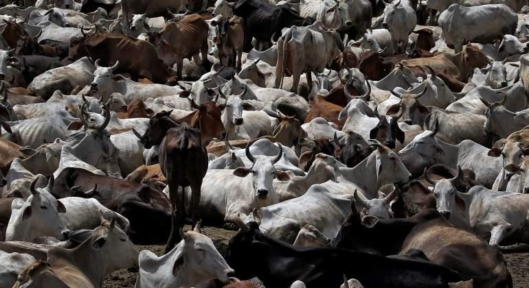 ganaderos-reuters-770.jpg