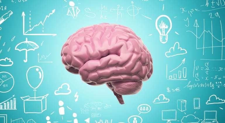 cerebro-3d-dreamstime.jpg