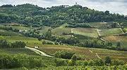 Oltrepò Pavese, un viaje por los antiguos sabores del vino y campesinos