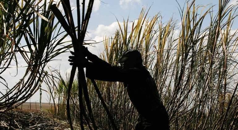 Azúcar; El nuevo problema entre México y Estados Unidos