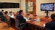 Pedro-Sanchez-videoconferencia-presidentes-autonomicos-EFE-770.jpg