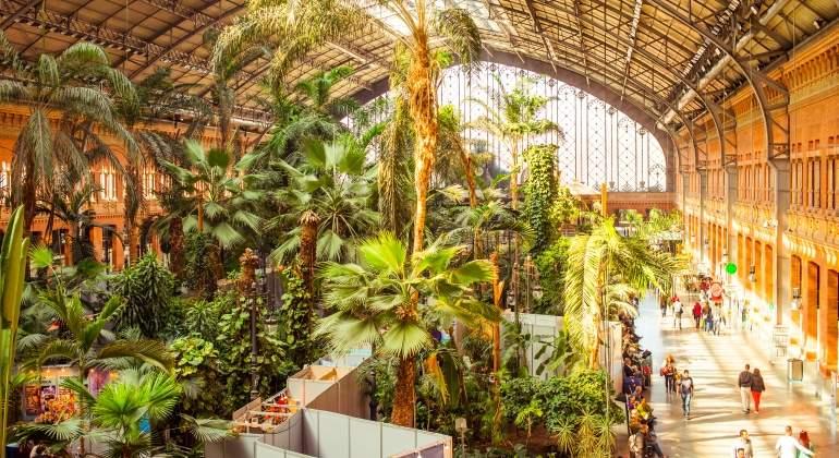 jardin-atocha-dreamstime.jpg