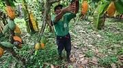 agricultor_peru_empleo770.jpg