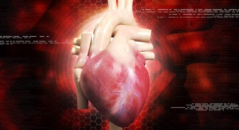 corazon-humano-dreamstime-2.jpg
