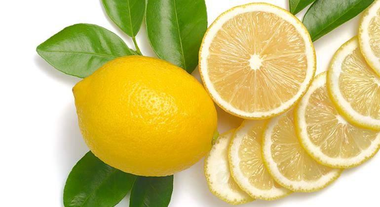 limon-hojas-770.jpg