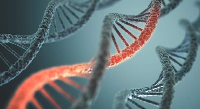 genes-adn-dreamstime.jpg