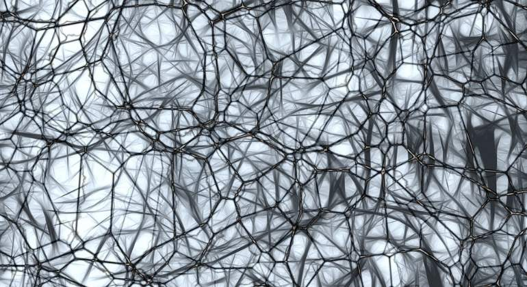 neuronas-cerebro-770x420-pixabay.jpg