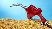 El Gobierno prepara un decreto para duplicar los biocarburantes en el transporte