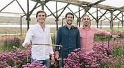 Colvin consigue 14 millones de financiación para expandir la venta de flores online