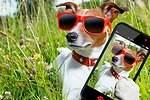 Las claves para conseguir el selfie perfecto