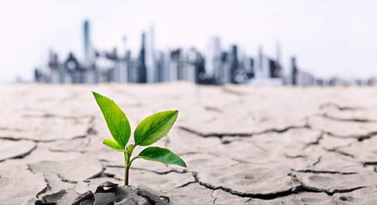 Cambio climtico