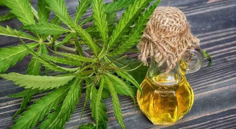 Cannabisaceite770.jpg