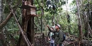 Crean el primer Comité de Subcuenca en la Amazonía de Perú