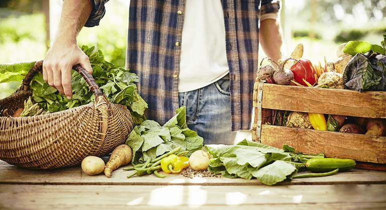 verduras-bio-770-istock.jpg
