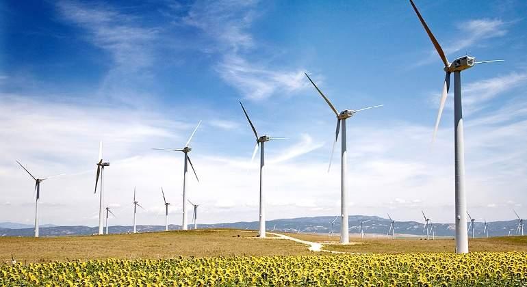 renovables-eolica-girasoles.jpg
