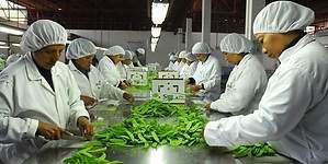 Perú y China firmarán convenio para crear comercio electrónico en mypes