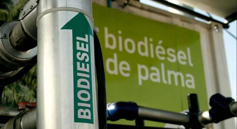 foto-fede-biocombustibles