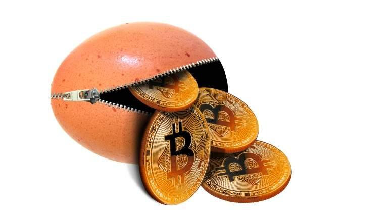 bitcoin-monedero-cremallera.jpg