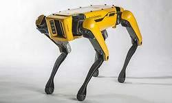 Los robots ya colaboran