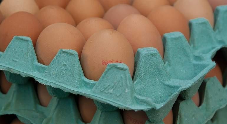 eggs-1887395_1920.jpg