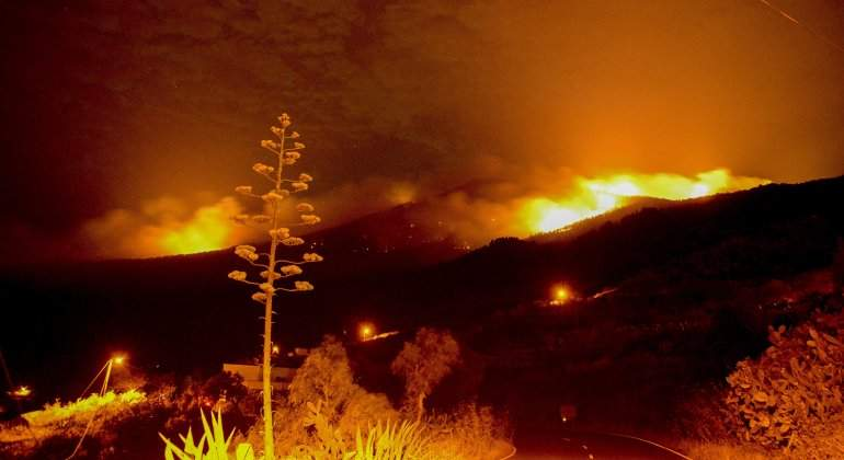 incendio-palma-canarias.jpg